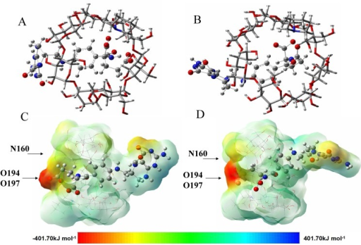 The optimized geometries for the lowest energy conformation for the inclusion complexes of folinic acid diastereomers with PIP-β-CD.(A) levo-folinic acid with PIP-β-CD. (B) (6R,2'S)-diastereomer with PIP-β-CD. The molecular electrostatic potential (MEP) maps of the optimized conformation for the inclusion complexes of folinic acid diastereomers with PIP-β-CD. (C) levo-folinic acid with PIP-β-CD. (D) (6R,2'S)-diastereomer with PIP-β-CD.