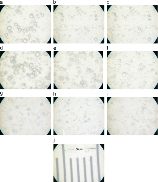 The appearance of droplets in FA, FB, FC. The photomicrographs of three emulsion-based formulations with DEET and/or OBZ (a: FA with DEET and OBZ; b: FA with OBZ; c: FA with DEET; d: FB with DEET and OBZ; e: FB with OBZ; f: FB with DEET; g: FC with DEET and OBZ; h: FC with OBZ; i: FC with DEET; j: Scale) were obtained using an optical microscopy and a digital camera. All the preparations are simple emulsions (oil-in-water or water-in-oil).
