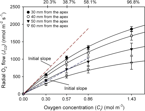 Rates of radial oxygen flow (JO2) along root segments plotted against the internal oxygen concentration (Ci). According to Henry's law, 20.3, 38.7, 58.1, and 96.8% O2 (at a mean overpressures of 10 kPa) equated to 0.3, 0.57, 0.85, and 1.43 mol m−3 at the inner surface of the OPR, respectively. The radial O2 flows (JO2) increased with increasing O2 concentrations, but increases in JO2 were not linear, which was due to limitations of the technique (see Discussion). Red and blue dashed lines indicate the initial slopes (0% O2) of JO2/Ci curves for 30 mm and 60 mm, respectively. Data given are means ±SD (n=5–24 root segments).
