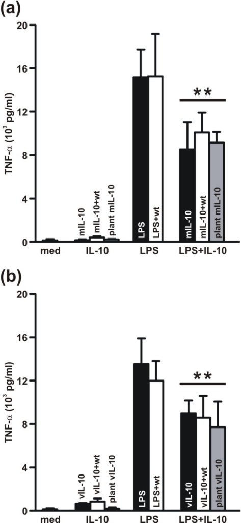 Inhibition of LPS-induced TNFα production by plant-derived murine and viral IL-10. J774 cells were stimulated for 18 h with IL-10 alone, LPS alone, or LPS plus IL-10. The eluate of the purification of wild type leaves (wt) was also included, alone or in combination with commercial IL-10, to exclude the interference of plant proteins with the assay. TNFα secretion in the culture medium (med) was quantified by ELISA and is reported as pg/ml supernatant. Values are the means ± SD of four independent experiments for the murine IL-10 (a) and three independent experiments for the viral IL-10 (b). ** p < 0.001.