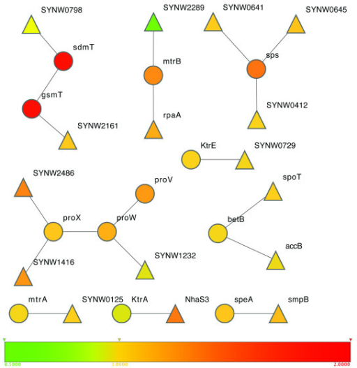 Genes recruited based on predicted protein-protein interactions. Circles represent genes in the initial network, and the triangles are the new genes recruited based on protein-protein interactions. The fold-change of gene expression levels in WH8102 under hyperosmotic stress against normal conditions is color-coded. (the Cytoscape program [46]).