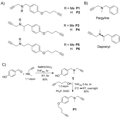 design and synthesis of abp probes for monoamine oxidas open i