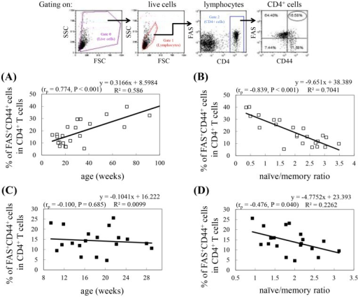 Correlation between the percentage of CD4+ T cells that are FAS+CD44+ and age or the naïve/memory cell ratio.Splenocytes isolated from Balb/c and NOD mice were stained with PE-Cy5-conjugated anti-CD4, FITC-conjugated anti-CD44, and PE-conjugated anti-FAS antibodies. Gating was performed on live CD4+ T cells. (A, C) The dot plots represent the percentage of CD4+ T cells that are FAS+CD44+ in Balb/c mice (A) and NOD mice (C) versus age. (B, D) The dot plots represent the percentage of CD4+ T cells that are FAS+CD44+ in Balb/c mice (B) and NOD mice (D) versus naïve/memory ratio, as determined in Figure 2D. The experimental data were obtained from 2 pooled spleens for each experiment (Balb/c: n = 46 mice; NOD: n = 38 mice). Shown on the top is the gating strategy used in the analysis of the percentage of FAS+CD44+ cells in the CD4+ T cell population. Pearson correlation coefficients (rp), P values, and regression equations are shown in each panel.