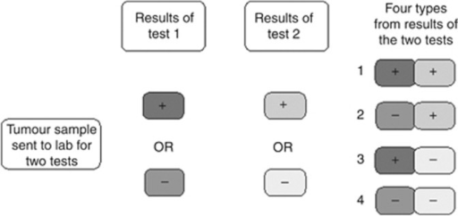 Diagram in patient information sheet 1 – given to patients to explain the tests carried out on their tumour sample.