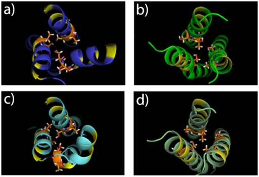 Models for plexin-B1 trimer TM region in the TM-JM models before (a,c on top panel) and after MD simulations (b,d on bottom panel).See legend for Fig. 4.