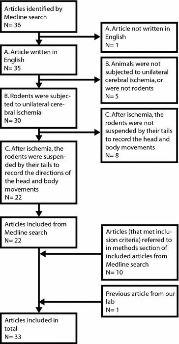 Flow chart of article inclusion for the systematic review. From the original Medline search and through reviewing the articles retrieved, together with the previous article from our lab [42], there were 33 articles. These were further analyzed with regard to main swing direction in the EBST after unilateral cerebral ischemia.