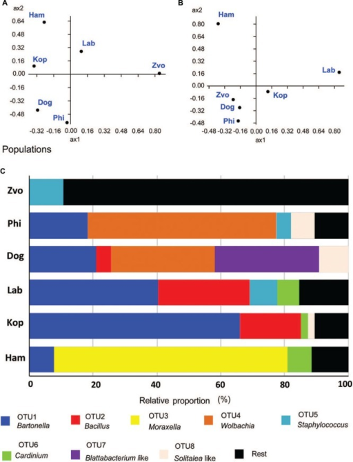 Comparison of bacterial communities in T. putrescentiae populations based on Sanger sequencing of the 16S rRNA gene clones, the amplicons originated from eubacterial primers (F24/R1492): (A,B) principal coordinate analyses of bacterial communities in examined mite populations; (A) based on Euclidian distance; (B) based on Jacquard similarity index; (C) relative proportions of cloned bacterial sequences in our 16S rRNA library from different populations of T. putrescentiae. Abbreviations for the T. putrescentiae populations are listed in Table 1.