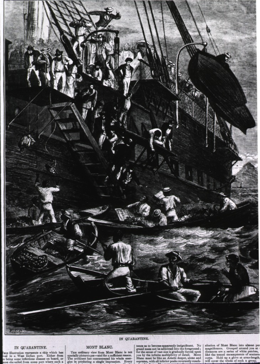 <p>At quarantine. Fruits, etc., being brought to shipside, in a West Indian port.</p>