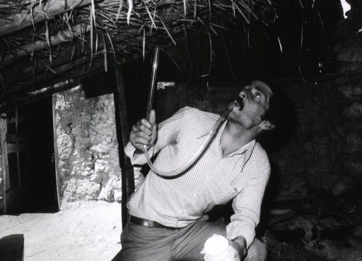 <p>Interior view of a stone building with a bamboo and grass roof; a man is collecting mosquitoes by sucking them into a plastic tube.</p>