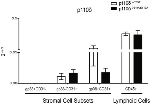 p110δ mRNA expression in spleen stromal cell populations from p110δWT/WT and p110δD910A/D910A mice.Total RNA was extracted from sorted p110δWT/WT and p110δD910A/D910A spleen stromal cell subsets (n = 5 mice/genotype). Lymphoid cells (CD45+) were sorted as control. Expression of p110δ mRNA was analyzed by qRT-PCR. Normalized quantities (mean 2−ΔCt) of p110δ mRNA are shown.