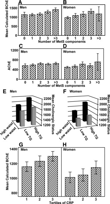 Cholinergic activity and risk factors in MetS patients. (A)–(D) Cholinergic activity (A–B, BChE; C–D, AChE) versus the number of MetS components, according to gender, represented as bar graphs ± S.E.M. (0 represents individuals with no components, >3 represents individuals with four or five components). One-way anova was used to compare groups, P < 0.001. (E) and (F) The interaction of triglyceride levels and waist circumference with cholinergic activity. Bar graphs represent mean cholinergic status ± S.E.M. for each combination of factors, by gender (E, men; F, women). (G) and (H) BChE activity in tertiles of C-reactive protein. Bar graphs represent the mean calculated BChE activity ± S.E.M., by gender (G, men; H, women).