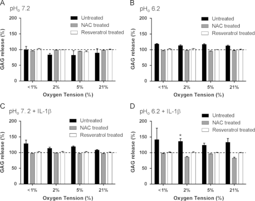 Effect of oxygen tension, pH, and IL-1β on glyosaminoglycan (GAG) release from equine articular chondrocytes in the absence or presence of resveratrol or N-acetylcysteine. Equine articular chondrocytes were cultured in 3D alginate beads for 48 h in <1, 2, 5, or 21% O2 at pH 7.2 (A), pH 6.2 (B), pH 7.2 plus 10 ng/ml IL-1β (C) or pH 6.2 plus 10 ng/ml IL-1β (D) in the absence or presence of N-acetylcysteine (2 mM) or resveratrol (10 µM). GAG release was measured in media using the dimethylmethylene blue (DMMB) assay. Bar charts represent mean±SEM, n=3. *P<0.05 versus control (time=0, 5%O2, pH 7.2).
