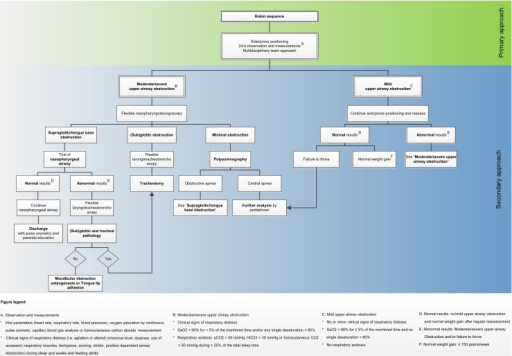 Algorithm of the institutional approach to infants with Robin sequence