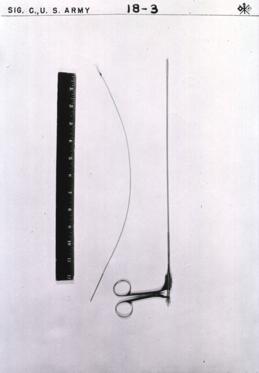 <p>Long distance view of the medical implement, which is shown next to a ruler marked by inches.</p>