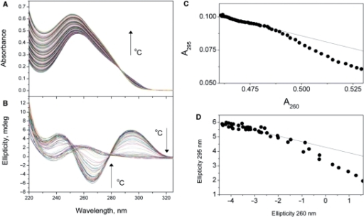 Whole-spectra melting data and the test of the two-state assumption. Thermal denaturation of the human telomere quadruplex sequence 5′AGGG(TTAGGG)3 in a solution containing 0.185 M NaCl is shown as monitored by UV absorbance (A) or CD (B). The corresponding two-wavelength parametric plots to test the two-state assumption (144) are shown in (C and D). The nonlearity of the the data in panels C and D indicate that the denaturation of the quadruplex is not a simple two-state process, and the intermediate states must be included in the reaction mechanism.