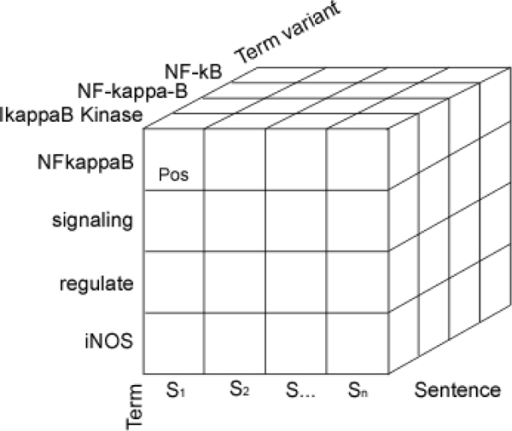 Dimensional term index (paragraph).