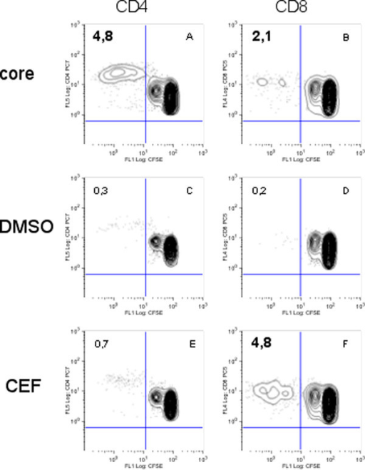 example of proliferation for PBMC of volunteer EFS 20. Dot-plots show the percentage of proliferative CD8 + (FL1/FL4) or CD4 + (FL1/FL5) - T cells. The number in the upper left panel stands for the percentage of CD4+ or CD8+ proliferative cells among the total CD4+ or CD8+ -T lymphocyte population, respectively, in the absence (DMSO) or the presence of Core or CEF antigens. The positive responses are in bold characters.