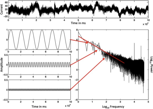The ordered series of a single EEG-electrode record, sampled at 500 Hz (top) and the illustration of a spectral analysis of this record (bottom, right). Specific frequencies and magnitudes of change (bottom, left) are used to approximate the rough graph of the EEG data (top), and the outcome is the spectral portrait (lower right) on log–log axes. The spectral slope −α = −1.08 is close to idealized 1/f noise (−α = −1.00). The Y-axes in the illustrated sine waves have been adjusted to make smaller amplitude sine waves visible.