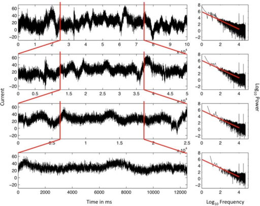 Ordered series of the single EEG-electrode recording from Figure 1 (top, left) and the resulting spectral plot (right) on log–log axes. The top panel includes 16 min of continuous EEG recordings. All other panels are subsets of the original data series. The first and last quarters of each data series are both deleted in each iteration, yielding eventually a data series that ran for 2 min (bottom). The scaling relation remains very similar for each nested series, close to idealized 1/f noise, and demonstrating the statistical self-similarity of the data series.
