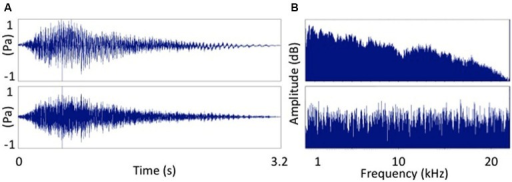 "Two sounds used as auditory stimuli. (A) The word ""Hey!"" and (B) signal correlated noise version of (A). Frequency spectra of the two auditory stimuli. (A) The word ""Hey!"" and (B) signal correlated noise (white noise) version of (A)."