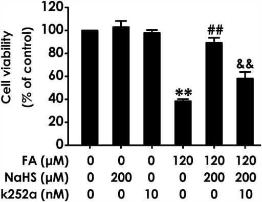 Effect of K252a on H2S-induced protection against formaldehyde-exerted cytotoxicity in PC12 cells.PC12 cells were preincubated with K252a (10 nM) for 30 min before pretreatment with NaHS (200 μM) for 30 min, and then cotreated with formaldehyde (FA, 120 μM) for 24 h. Cell viability was determined by the CCK-8 assay. Results were expressed as the mean ± S.E.M. of three independent experiments. **P < 0.01, versus control group; ##P < 0.01, versus FA-treated alone group; &&P < 0.01, versus cotreatment with NaHS and FA group.