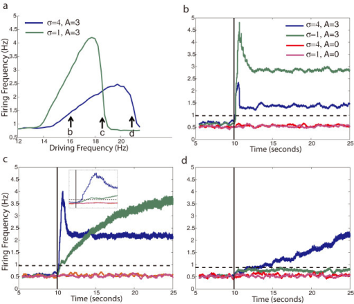 Response time to current induced resonance shift.(a) Example resonance curves for a network after additional current input begins 10 seconds into the simulation. The current input shifts the resonance frequency of the neurons as marked by the arrows. (b–d) response times of the network depicted on (a) 16 Hz (b), 18.5 Hz (c), and 21 Hz (d). Solid black line marks the onset of additional sub-threshold current. The average instantaneous firing rate over time is plotted for neurons within and outside of the network heterogeneity (σ = 4 and σ = 1, respectively) and also for non-oscillatory current input (A = 0). The inset in (c) shows the magnified timescale of firing onset. Black dashed lines mark 5 standard deviations above the baseline firing rate. All firing rate curves are averaged over 4 simulations.
