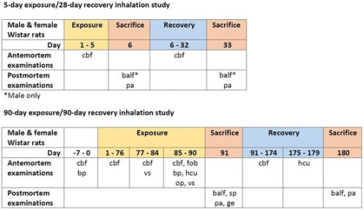 Graphical representation of the design of the 5-day exposure/28-day recovery and 90-day exposure/90-day recovery studies. Abbreviations: balf: bronchoalveolar lavage fluid; bp: blood pressure; cbf: clinical signs, body weight and food consumption; gt: genotoxicity tests (comet and micronucleus assays); hcu: hematology, blood chemistry and urinalysis; fob: functional observation battery; pa: pathology (organ weight, macroscopic and microscopic observations); op: ophthalmology; sp: sperm analysis; vs: vaginal smears