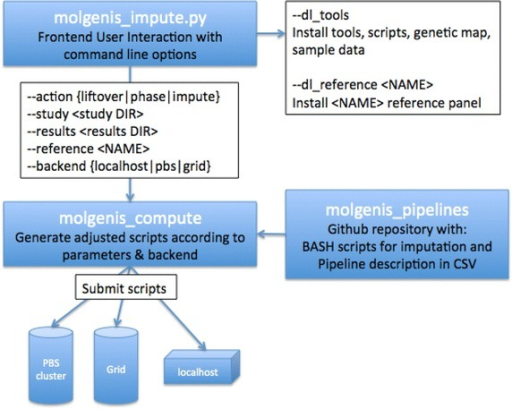 Outline of MOLGENIS-impute architecture.  is the python script with which the user interacts. The script can either install tools and reference panels or use MOLGENIS-compute to create and submit imputation scripts. The imputation BASH scripts and description of the pipeline are in a separate git repository.