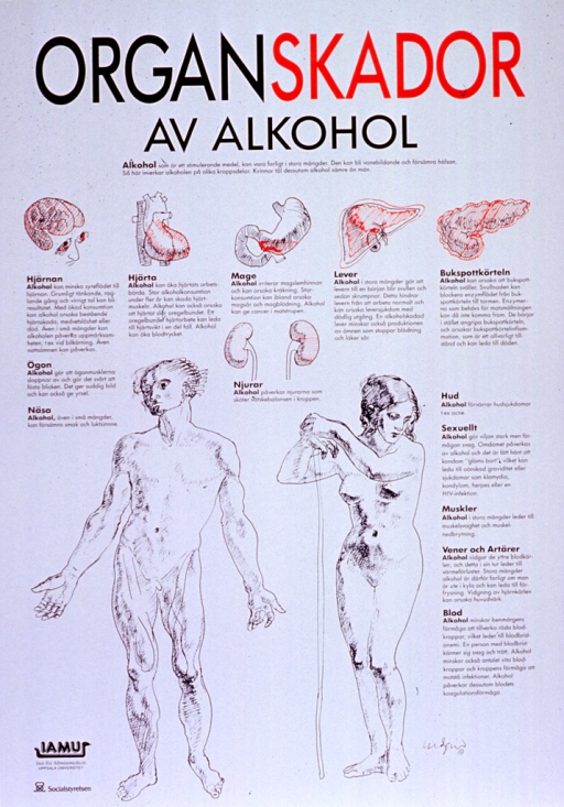 <p>White poster with black and red lettering.  Title at top of poster.  Visual images are line drawings of various organs, including the brain, heart, liver, etc., as well as a man and a woman.  Text on poster describes how alcohol damages the organs and other bodily systems.  Publisher information in lower left corner.</p>