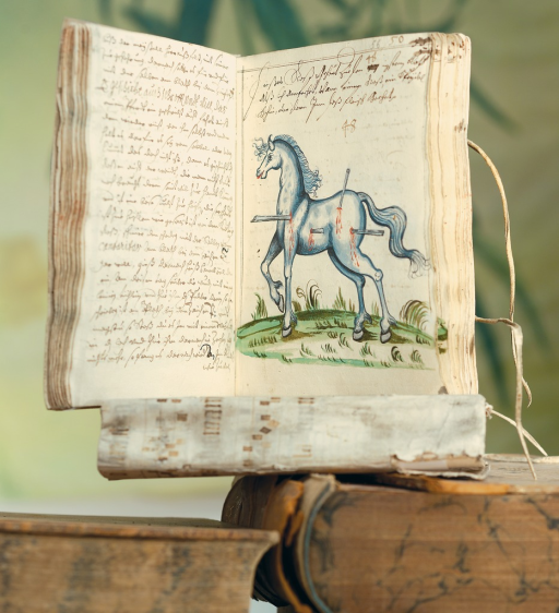 <p>Image of two facing pages from &quot;Rossarzneibuch&quot;, vol. 1, p. 56a. Opened book is displayed atop other books. Featured is a drawing of a horse which has been injured by puncture wounds. Also contains handwritten script in German.</p>