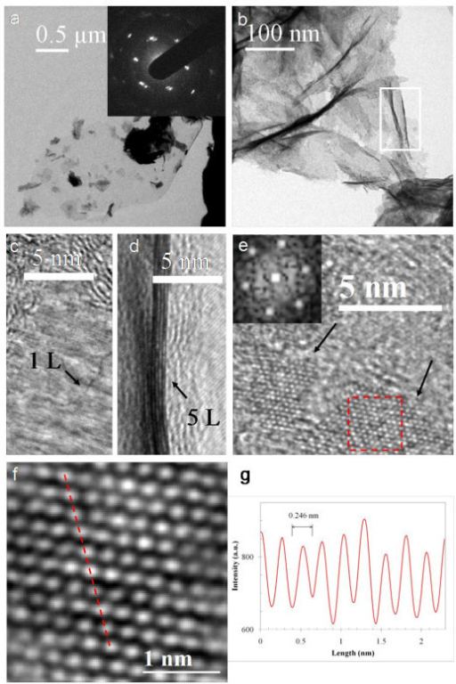 TEM characterization of CNWs. (a) A CNW sheet supported on a Cu grid. Electron diffraction from the CNW is shown as an inset. (b) The areas of a CNW with different thicknesses and wrinkles. (c) and (d) HRTEM images showing the edges of CNW film consisting of one, and five graphene layers, respectively. (d corresponds to the area defined by the white box in b). (e) HRTEM iamge of a CNW sheet with two well-crytallined regions (arrowed). The diffractogram (the inset) is from the red-squared region in (e). (f) A filtered image of the squared region in (e). (g) The intensity profile along the red dashed line in (f).