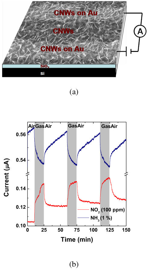 Gas sensing performance of as-produced CNWs. (a) SEM image of CNWs bridging two neighboring Au fingers of an interdigitated electrode. Gases are detected by measuring the change in the device current while applying a constant dc bias to the device. (b) Room-temperature sensing response for NO2 and NH3.