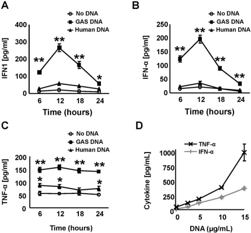Stimulation of murine macrophages by human and GAS DNA.(A–C) Bone marrow-derived mice macrophages (BMDMs) were stimulated with GAS and human genomic DNA (both 5 µg/ml) and secretion of IFN1, IFN-α and TNF-α in the supernatants measured. (D) Dose-dependency of GAS DNA-mediated stimulation (12 hours) of IFN-α and TNF-α secretion. Data were pooled from 3 experiments done in triplicates and presented as mean ± SEM. * P<0.05 ** P<0.01.