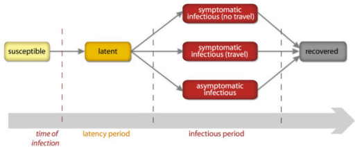 Natural history of influenza. After acquiring the infection, a susceptible individual enters the latent compartment, where he is infected but not yet infectious. After the average latency period, each infected individual becomes infectious, and may or may not show symptoms. Symptomatic cases are more infectious than asymptomatic cases. Finally, all infected individuals recover after the average infectious period and become immune to the disease.