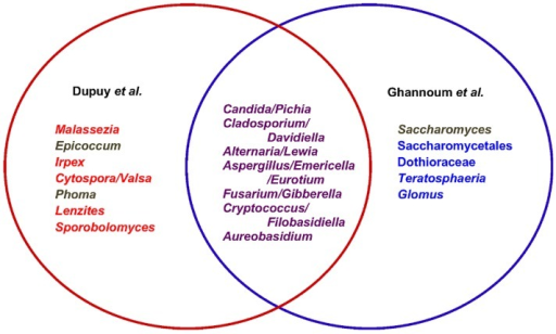 Venn Diagram Of The Relationships Between Results From Open I