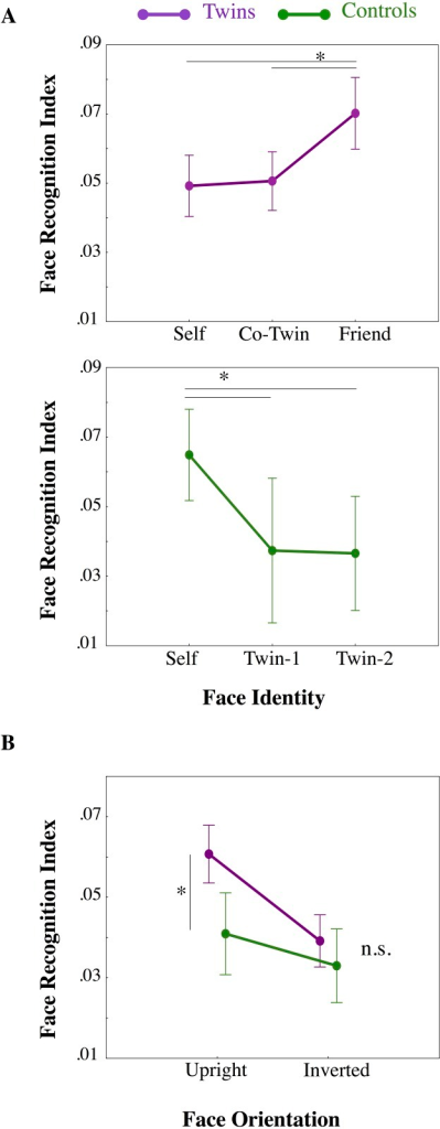 Face recognition indices.A) Results of separated repeated measures ANOVAs on Face Recognition performance (normalized inverse efficiency scores (IE), y-axis) scores are represented for both Twins (violet line) and Control (green line) participants as a function of observed Face Identity (x-axis). B) Results of mixed-model ANOVA comparing Twins (violet line) and Control (green line) Face Recognition performance (normalized inverse efficiency scores (IE) for mediated Twins faces; y-axis) as a function of Face Orientation (x-axis). Means and standard errors (SE) are represented. Asterisks indicate significant differences from Newman-Keuls post-hoc comparisons.