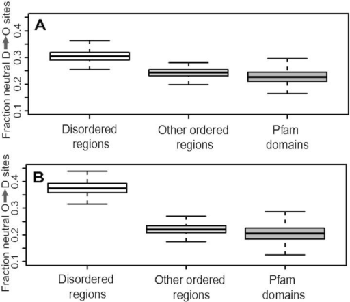 — Boxplots of the fraction of nearly neutral sites where biochemicalchanges can occur. Disordered regions show significantly greater fraction ofnearly neutral sites for positions that change disordered to ordered aminoacids (A), as well as ordered to disordered(B). Distribution is based on bootstrapped replicates asdescribed in Materials and Methods. O and D refer to amino acids found atrelatively higher proportions in ordered and disordered regions,respectively.