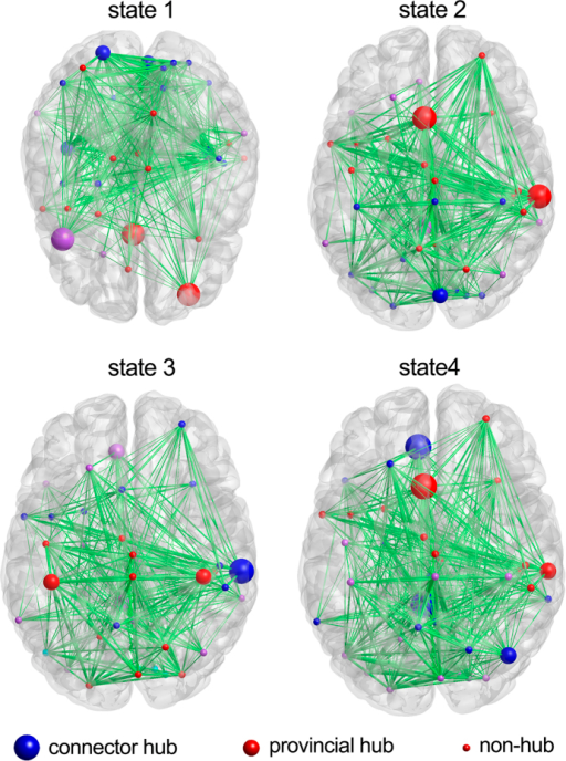 Hub structures of dynamic functional connectivity states.The nodes with the same color are assigned to the same module. The size of the nodes indicates their role: the largest are connector hubs, the smaller are provincial hubs, and the smallest are non-hub nodes.