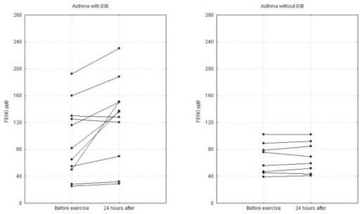Changes in FENO 24 hours after exercise in the groups of asthmatic patients.