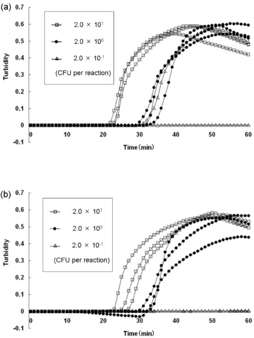 Sensitivity test for detection of V. parahaemolyticus in pure cultures and in spiked shrimp samples by real-time turbidimetry. The curves from left to right indicate decreasing concentrations of CFU from bacterial colonies [2.01 to 2.0-1 CFU per reaction]. (a) Detection of V. parahaemolyticus in pure cultures; (b) detection of V. parahaemolyticus in spiked shrimp samples.