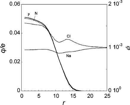 The dimensionless charge distribution due to the polycation (solid) and polyanion block (dashed), left ordinate, and the radial volume fraction, φ, profiles for the 1:1 electrolyte ions as indicated. For the parameters, see Table 1. Volume fraction of salt is φs = 0.001 corresponding to the concentration of approximately 0.05 mol/l