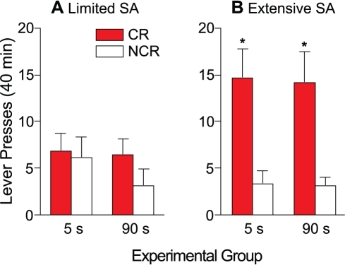 In both the 5- and 90-s groups, discrimination between the CR and NCR levers is observed following extensive (panel B) but not limited (panel A) cocaine self-administration experience.Limited self-administration experience consisted of 3 self-administration sessions. Extensive self-administration experience consisted of 24 self-administration sessions. Values are mean ± SEM. n's = 6–7/group. s, seconds; CR, conditioned reward lever; NCR, non-conditioned reward lever; SA, cocaine self-administration. *p<0.05 compared with NCR within the same group.