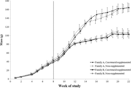 Weekly body masses of growing veiled chameleons during development. Measurements for all groups were taken at the same times, but data points are slightly offset for ease of interpretation. The vertical dashed line (at Week 8 of the study) represents the onset of carotenoid supplementation. All chameleons were provided with the same number of food items each day. Family A was significantly more massive than Family B at Week 1 and from Week 12 through Week 22 of the study. Points represent mean values with standard errors calculated from raw data.