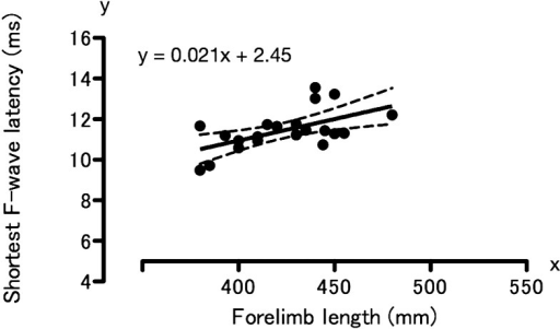 Linear regression analysis of shortest F-wave latency and forelimb length in 21clinically normal beagles. Correlation coefficient, 0.58; P<0.01(analyzed by linear regression using least-squares method). Solid line, regressionline; dotted lines, 95% of confidence intervals; solid circles, values from onedog.