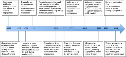 Timeline of major mathematical models of wound healing and of the process of angiogenesis. EC refers to endothelial cells and ECM to extracellular matrix.