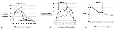Changes of selected laboratory parameters during the course of the disease and follow-up. Intitiation and termination of N-acetylcysteine (NAC) treatment is indicated by arrows. A) Liver enzymes. B) Total and direct bilirubin. Dashed line indicates patient's baseline level of total bilirubin. C) International normalized ratio.