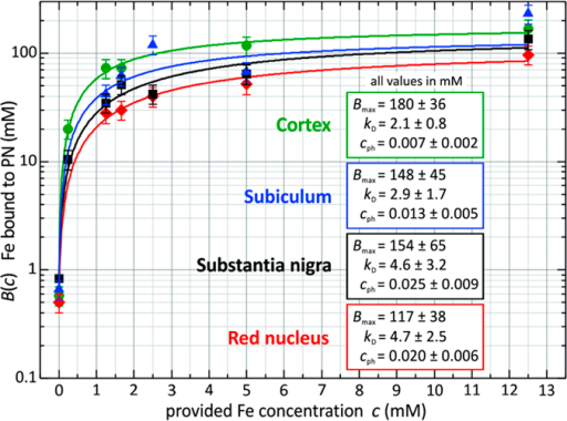 Concentration of iron bound to perineuronal nets in rat cortex, subiculum, substantia nigra and red nucleus as a function of the iron concentration applied.The relation can be described by a Langmuir adsorption equation. The stated errors are 20% of the average values from three PNs per applied iron concentration.