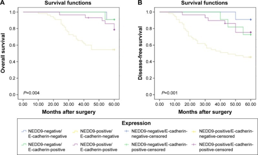 Kaplan–Meier curve with univariate analyses (log-rank) for patients with NEDD9-positive/E-cadherin-negative, NEDD9-negative/E-cadherin-positive, NEDD9-positive/E-cadherin-positive, and NEDD9-nagative/E-cadherin-positive.Notes: (A) OS curve of TNBC patients based on coexpression of NEDD9 and E-cadherin. (B) DFS curve of TNBC patients based on coexpression of NEDD9 and E-cadherin. All P<0.05.Abbreviation: NEDD9, neural precursor cell expressed, developmentally downregulated 9.