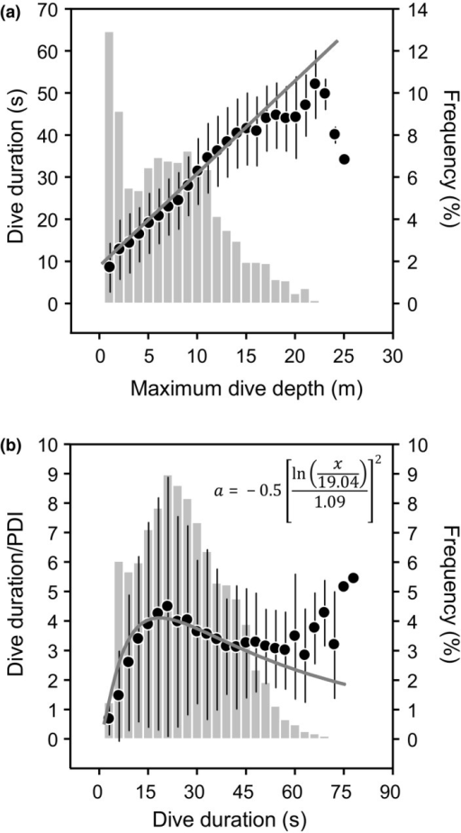 Diving behavior of Socotra cormorants. (a) Relationship between dive duration and maximum dive depth (black circles, y = 2.20x + 8.84, R2 = .69, P < .0001, n = 5,225) and frequency distribution of dive depth (gray vertical bars, n = 5,225). (b) Relationship between dive duration/postdive interval (PDI) and dive duration (black circles, y = 4.11ea, R2 = .06, P < .0001, n = 5,205) and frequency distribution of dive duration (gray vertical bars, n = 5,225)