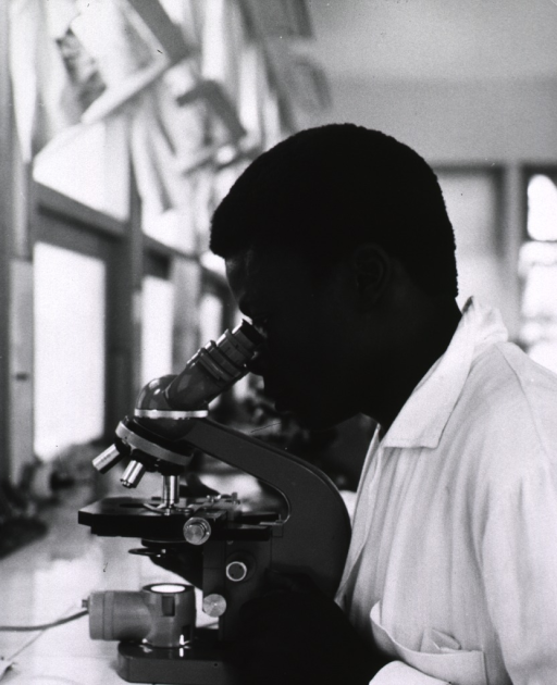 <p>A scientist is looking into a microscope.</p>